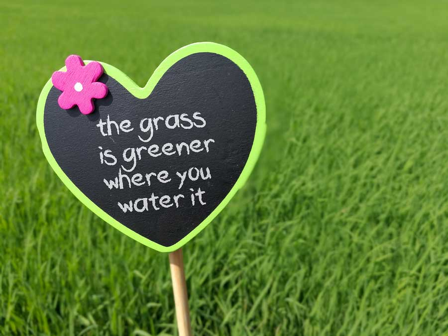 The danger of entitlement, office politics and 'grass is greener' mentality