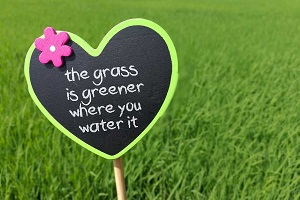 entitlement - grass is greener - damaging mentality